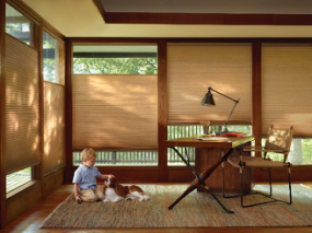 Discover tips to help budget for window coverings for your home.